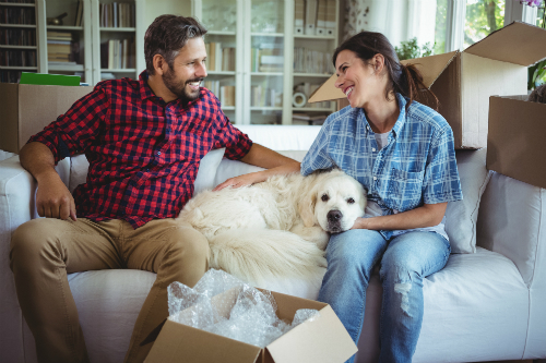 7 Tips to help you and your pet have a more peaceful move